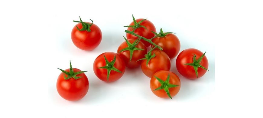 Tomate nedeterminate tip cherry